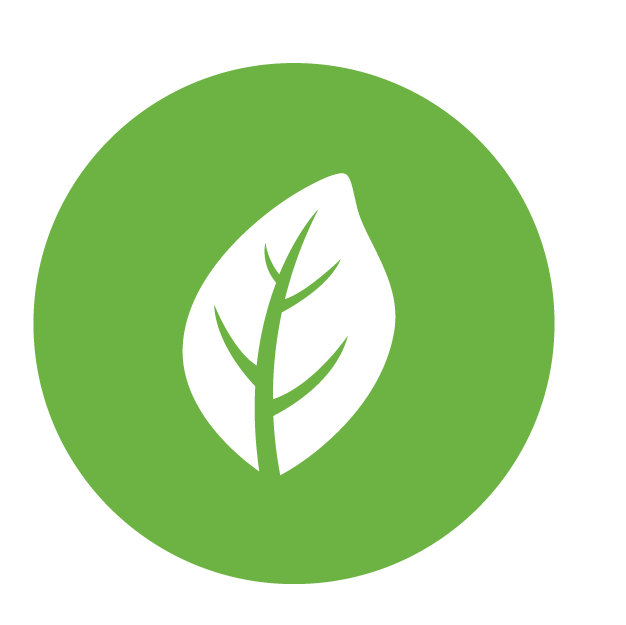 Sustainability icon, enabled. A green leaf.